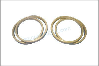 PEEK support ring