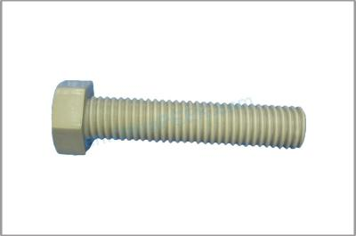 PEEK Special Engineering Plastic Screw